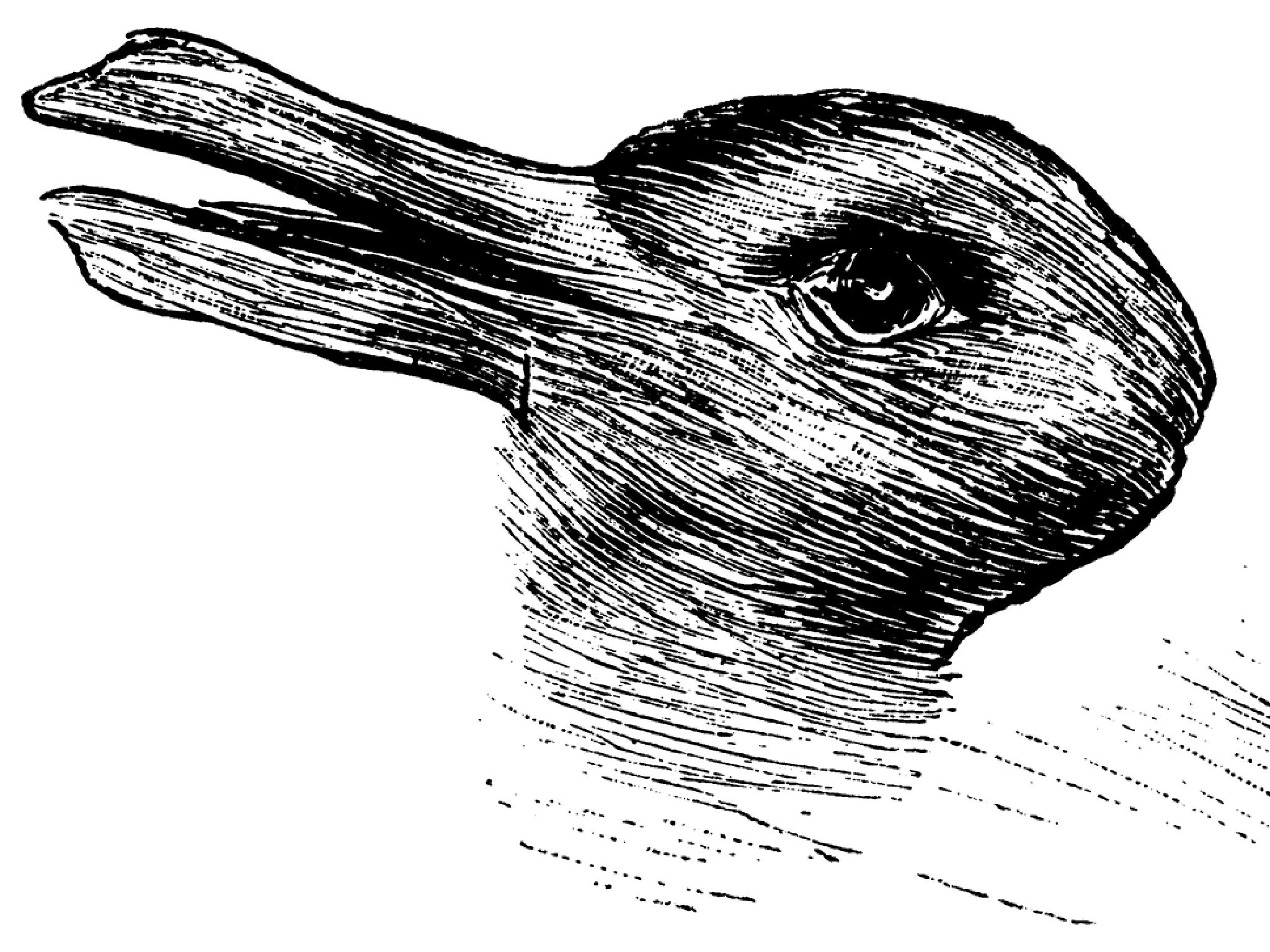 """Résultat de recherche d'images pour """"optical illusion duck"""""""