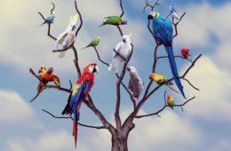 Macintosh HD:Users:Yasmine:Desktop:Plein de perroquets sur le meme arbre.jpg